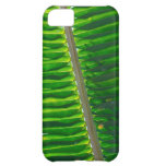 Leaf IPhone Case 4 Cover For iPhone 5C