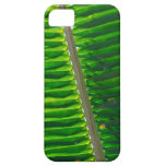 Leaf IPhone Case 4 iPhone 5 Cover