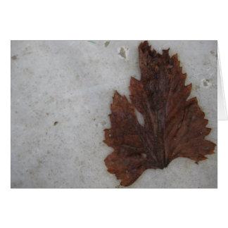 Leaf - Istanbul Card