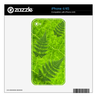 Leaf & Leaves iPhone 4S Decal