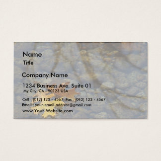 Leaf Leaves Streams Water Reflections Business Card