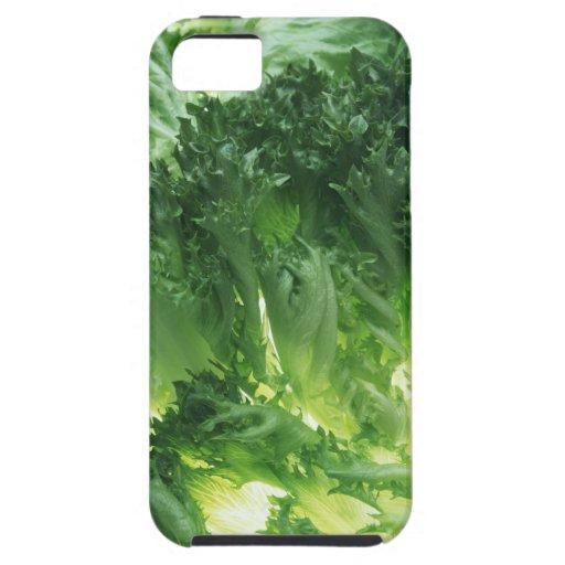Leaf Lettuce iPhone SE/5/5s Case