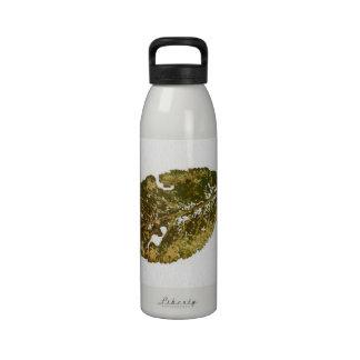 Leaf Liberty Bottle Reusable Water Bottle
