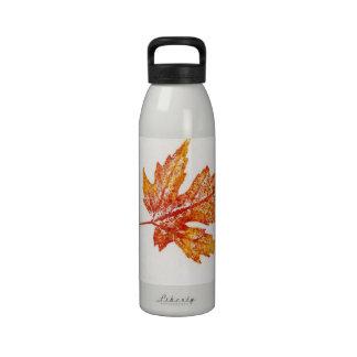 Leaf Liberty Bottle Reusable Water Bottles