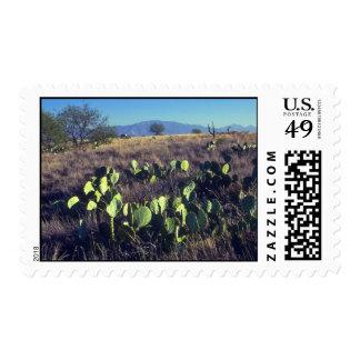 Leaf Like Stems Postage Stamp