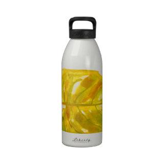 Leaf Logo Reusable Water Bottles