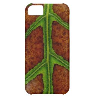 Leaf Losing Chlorophyll Case