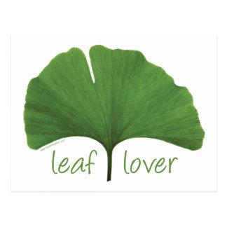 Leaf Lover Tree Hugger Postcard