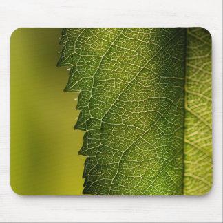 Leaf Macro Mouse Pad