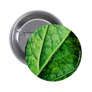 Leaf Macro Pinback Buttons