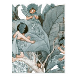 Leaf Maker Fairies Postcard