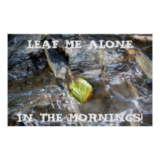 Leaf Me Alone, In The Mornings! Poster