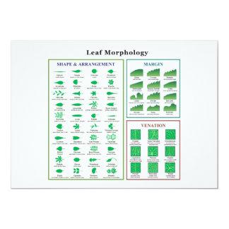 Leaf Morphology Chart Card