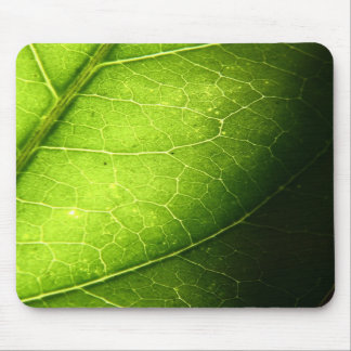Leaf Mouse Pads