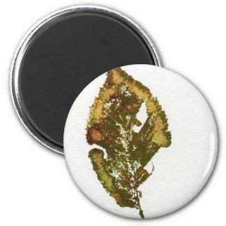 Leaf Nature Print Magnet