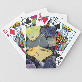 Leaf of Fremont cottonwood on flood plain 2 Bicycle Playing Cards