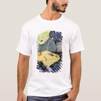 Leaf of Fremont cottonwood on flood plain 2 T-Shirt