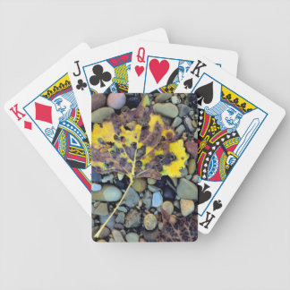 Leaf of Fremont cottonwood on flood plain 3 Bicycle Playing Cards