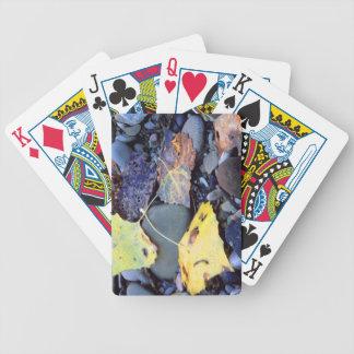 Leaf of Fremont cottonwood on flood plain Bicycle Playing Cards