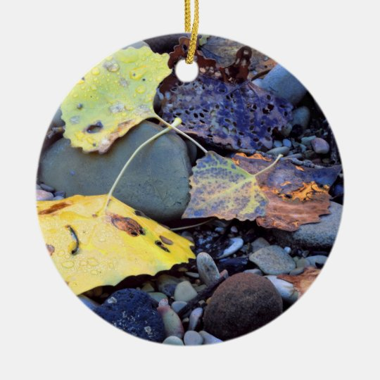 Leaf of Fremont cottonwood on flood plain Ceramic Ornament
