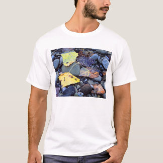 Leaf of Fremont cottonwood on flood plain T-Shirt