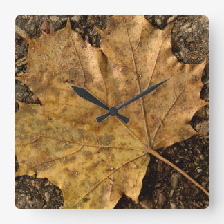 Leaf On The Road Wall Clock