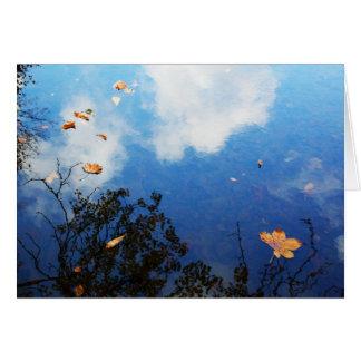 Leaf on Water Card