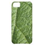 Leaf Pattern Design. iPhone 5C Cover