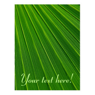 Leaf Pattern Postcard