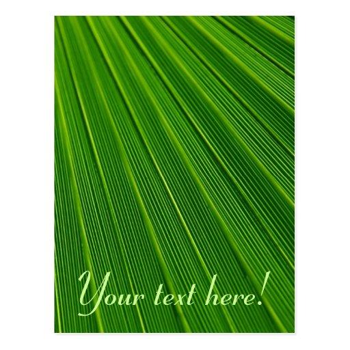 Leaf Pattern Postcard