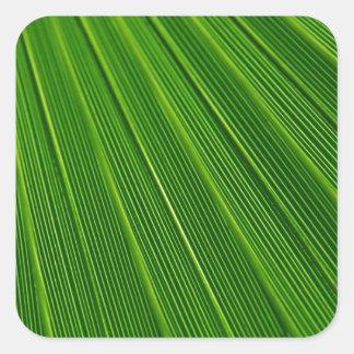 Leaf Pattern Square Sticker