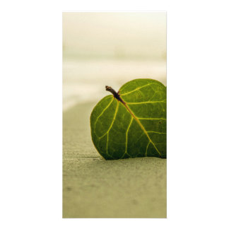 Leaf Photo Greeting Card