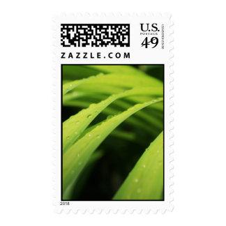 Leaf Postage
