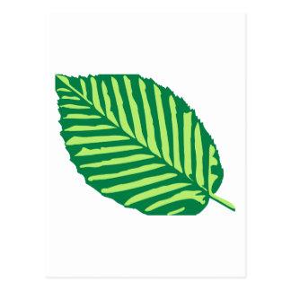 Leaf Postcards