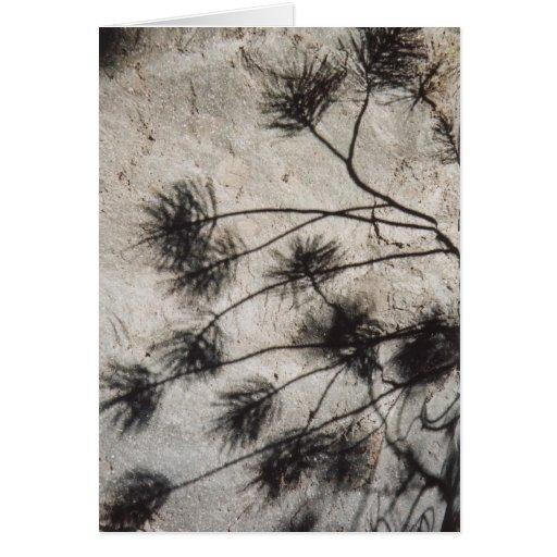 Leaf Shadows on Lava Rock Card