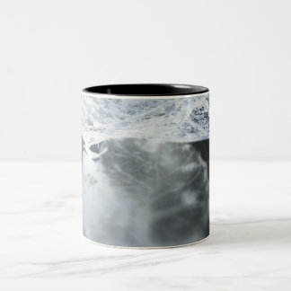 Leaf skeleton and shaddow Two-Tone coffee mug