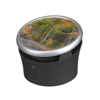 Leaf Strewn Gravel Road With Autumn Color Bluetooth Speaker