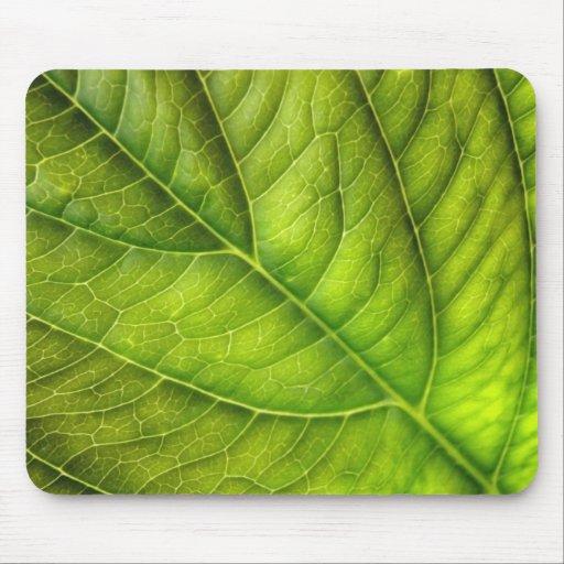 leaf texture mouse pad