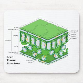 Leaf Tissue Structure Diagram Mouse Pad