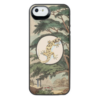 Leaf-Toed Gecko In Natural Habitat Illustration Uncommon Power Gallery™ iPhone 5 Battery Case