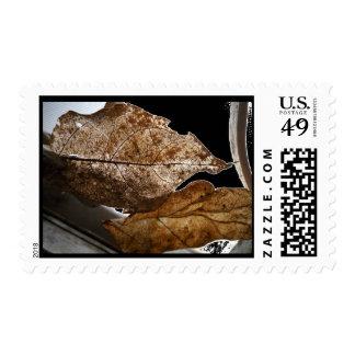Leaf-Veins-Art Postage Stamps