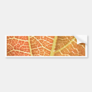 Leaf Veins Bumper Sticker