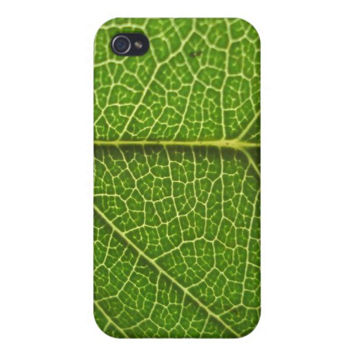 Leaf Veins Covers For iPhone 4