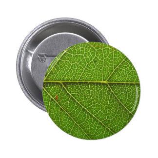 Leaf Veins Pin