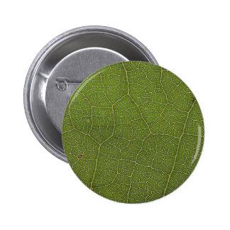 Leaf Veins Pinback Buttons