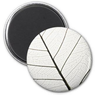 Leaf veins texture refrigerator magnet
