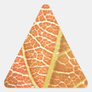 Leaf Veins Triangle Sticker