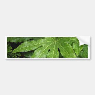 Leaf with rain drops bumper sticker