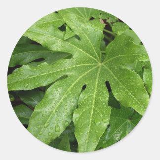 Leaf with rain drops classic round sticker
