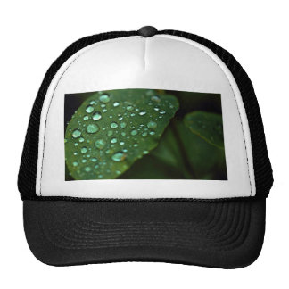 Leaf with raindrops trucker hats